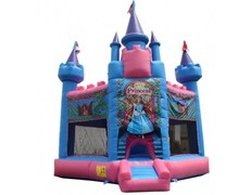 15x15 Princess Hex Bounce House rental in St Augustine, FL