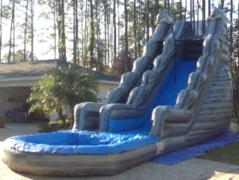 20-Foot Dolphin Marble Slip-n-Slide in St Augustine, FL